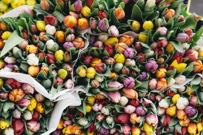 LetsExploreMagazine-Feature-FlowersMarket